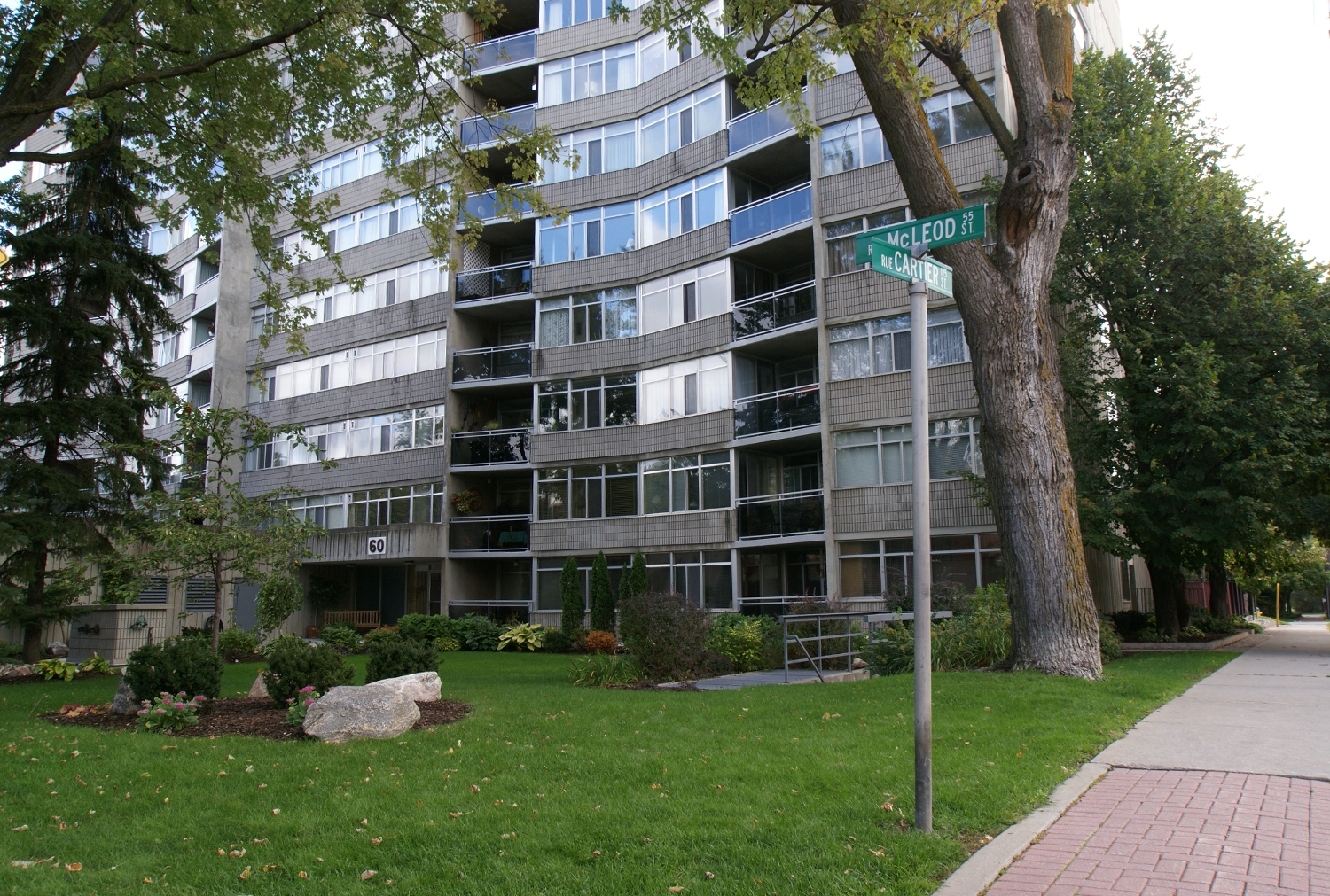 807 – 60 McLeod St – Rented January 2018
